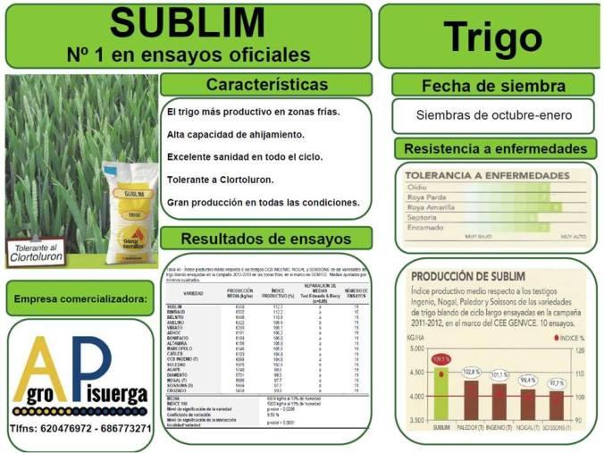 trigo-sublim-semillas-agropisuerga